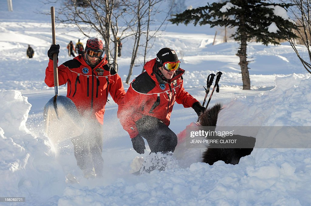 An avalanche dog, followed by rescuers, looks for a person buried in the snow, on December 11, 2012, during an avalanche dogs training session near Les Deux Alpes ski resort in the French Alps. France, with 140 avalanche rescue teams with dogs, is a reference in this activity sector which trains foreigners from Europe and other continents.