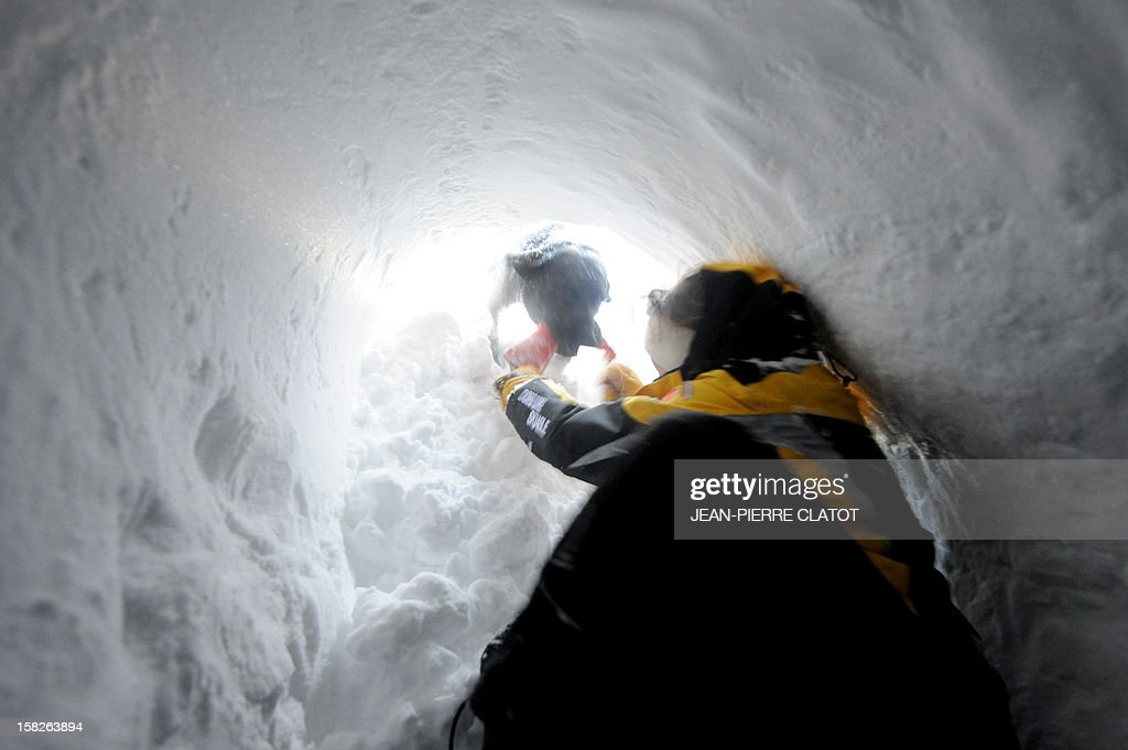 An avalanche dog frees a person buried in the snow, on December 11, 2012, during an avalanche dogs training session near Les Deux Alpes ski resort in the French Alps. France, with 140 avalanche rescue teams with dogs, is a reference in this activity sector which trains foreigners from Europe and other continents.