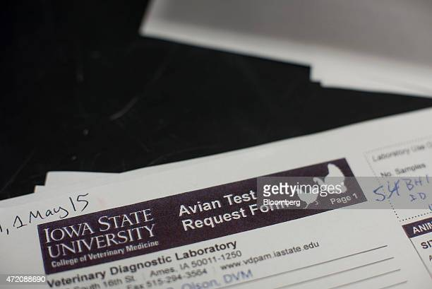 An Avian Test Request Form sits on a desk in the realtime analytical diagnostics lab at the Iowa State University College of Veterinary Medicine in...