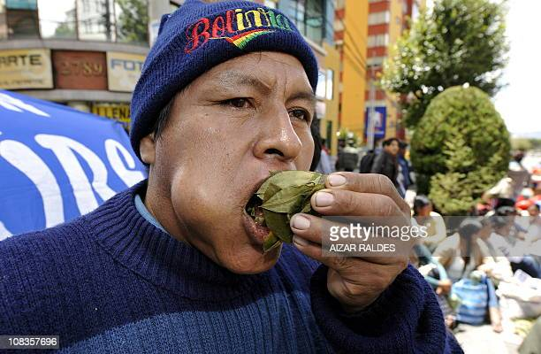 An Aymara man chews coca leaves during a communal cocachewing day to support the Bolivian government petition to the United Nations Economic and...