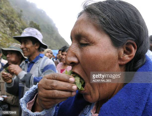 An Aymara woman chews coca leaves during a blockade by coca growers from the Yungas a stretch of forest along the Andes Mountains on western Bolivia...