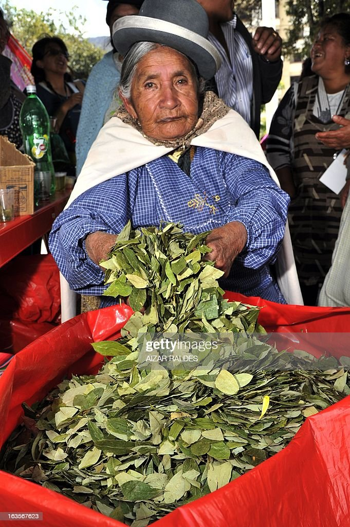 An Aymara woman sells coca leaves at a square of La Paz, on March 12, 2013 during the celebration of the first National year of Coca Chewing (acullicu). AFP PHOTO/Aizar Raldes