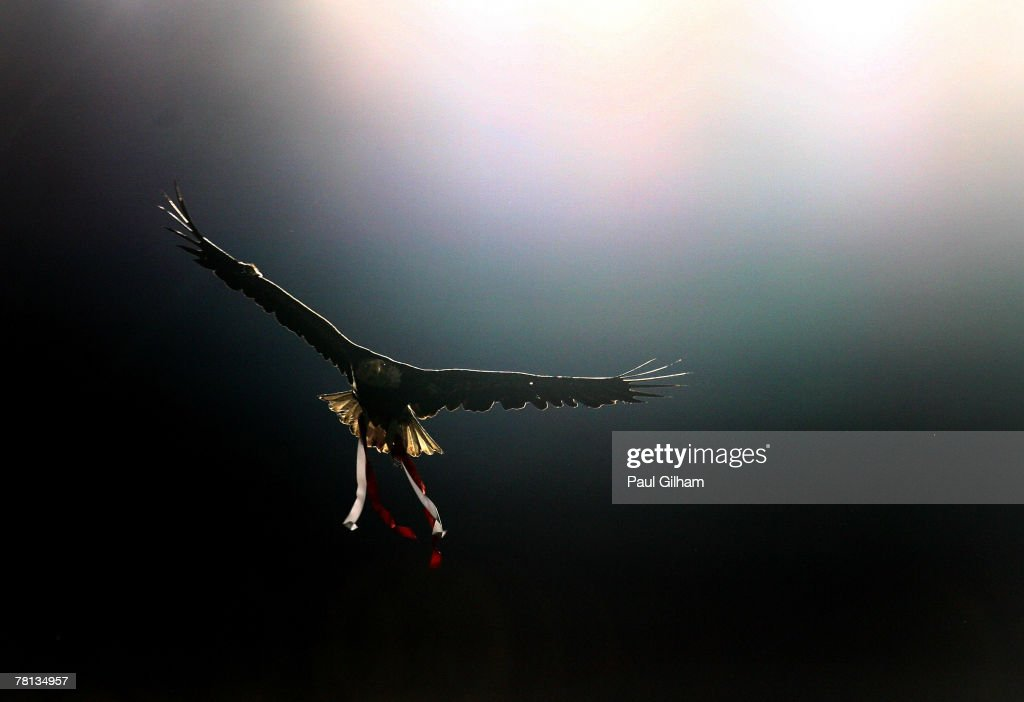 An eagle mascot for Benfica flys into the stadium prior to the kick off of the UEFA Champions League Group D match between Benfica and AC Milan at...