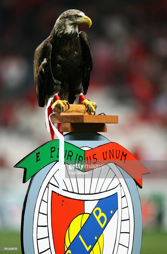 An eagle mascot for Benfica looks on prior to the kick off of the UEFA Champions League Group D match between Benfica and AC Milan at the Luz Stadium...