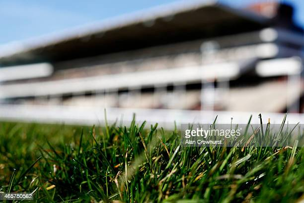 An early morning dew on the grass at Cheltenham racecourse on March 10 2015 in Cheltenham England