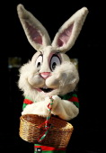 An Easter Bunny wearing a Rabbitohs jersey poses before the round seven NRL match between the South Sydney Rabbitohs and the CanterburyBankstown...