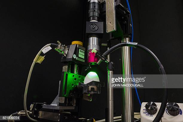 An egg is placed on a Spectrometer at a lab at the Carl Gustav Carus Faculty of Medicine of the Dresden Institute of Technology as part of a project...