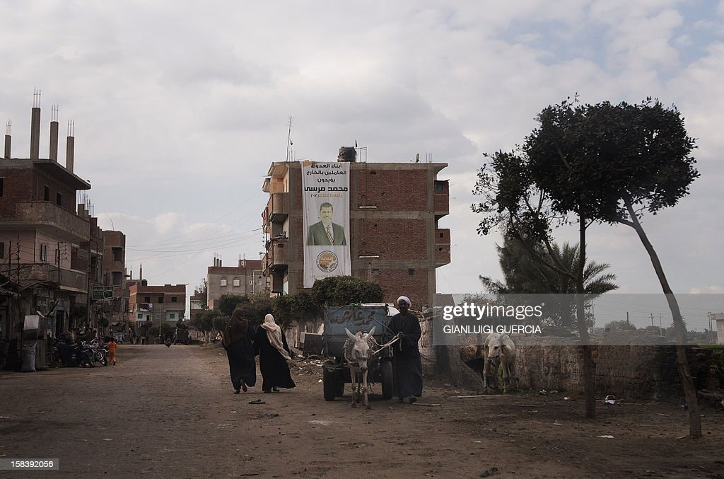 An Egyptian man leads a donkey pulling a cart in President Mohamed Morsi's hometown Adwa in the Nile Delta on December 15, 2012. Egypt's opposition cried fraud in the first round of a divisive referendum on a new constitution, accusing Morsi's Muslim Brotherhood of rigging votes to adopt the Islamist-backed text.