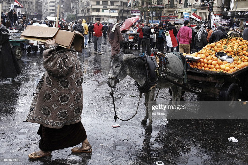 An Egyptian woman walks past a mule standing in the rain during a protest against Egyptian President Mohammed Morsi in Tahrir Square on February 1, 2013 in Cairo, Egypt. Protests continued across Egypt nearly one week after the second anniversary of the Egyptian Revolution that overthrew former President Hosni Mubarak on January 25, 2011. Further protests are expected Friday to commemorate the first anniversary of the Port Said football massace, when over 70 fans of the Cairo-based Al Ahly football club were killed in a violent post-match brawl between fans of the opposing teams inside the Port Said football stadium after a match between the Al Ahly and Al Masry football teams. (Photo by Ed Giles/Getty Images).