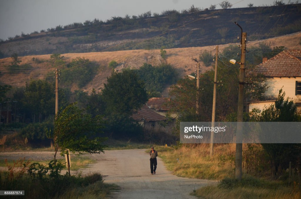 An elderly man is walking in the village of Matochina. The people in the village are afraid for their homes. Fire destroyed near 2000 acres between the villages of Sakartsi and Matochina, which are located along the Bulgarian-Turkish border fence and 270 kilometres East the Bulgarian capital of Sofia. More than 50 people, firefighters, volunteers and the people from the villages are working on place, Matochina, Bulgaria on August 16, 2017