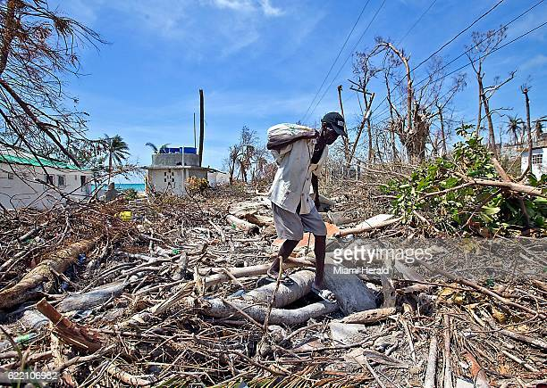 An elderly man navigates the downed trees along the storm battered beach in Port Salut Haiti on October 11 2016