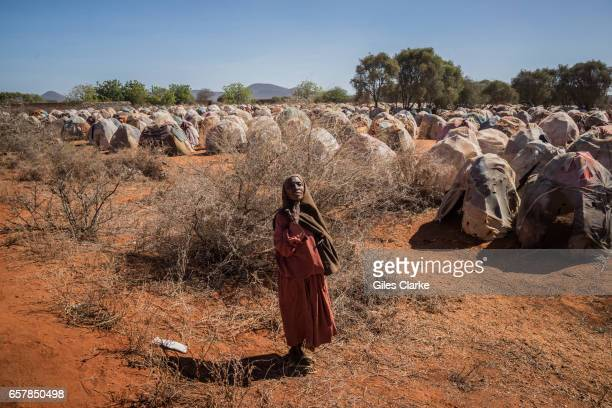 An elderly woman begs for food at an IDP camp on the outskirts of Dinsor Somalia Somalia is in the grip of an intense drought induced by consecutive...