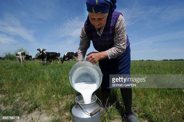TOPSHOT An elderly woman pours milk after milking in the village of Zhadeny some 300 km southwest of Minsk on June 4 2017 A spat between Russia and...