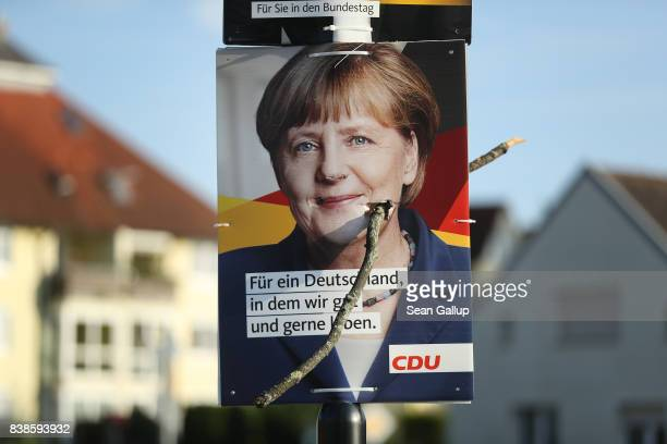 An election campaign poster that depicts German Chancellor and Christian Democrat Angela Merkel hangs with a stick plunged through it on August 23...