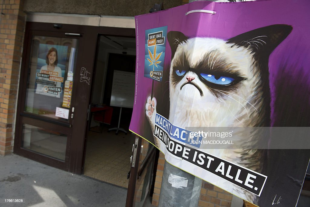 An election poster calling for the legalisation of marijuana and featuring internet meme 'Grumpy Cat' hangs outside the Pirate Party's campaign headquarters in Berlin on August 16, 2013. The Pirates, who to everyone's surprise were elected into Berlin's regional parliament in September 2011, are trying to capitalise on their recent electoral gains in upcoming parliamentary elections, running on a platform of transparency in government. Germany goes to the polls on September 22, 2013. Placard reads: 'Hurry up, my dope is everything'.