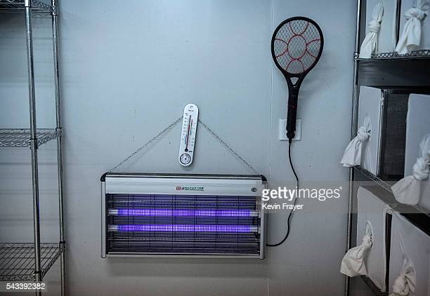 An electric racquet and a mosquito zapper used to kill a stray mosquitos are seen in the Mass Production Facility at the Sun YatSen...