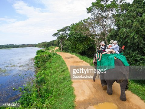 An elephant carrying a group of people down a path