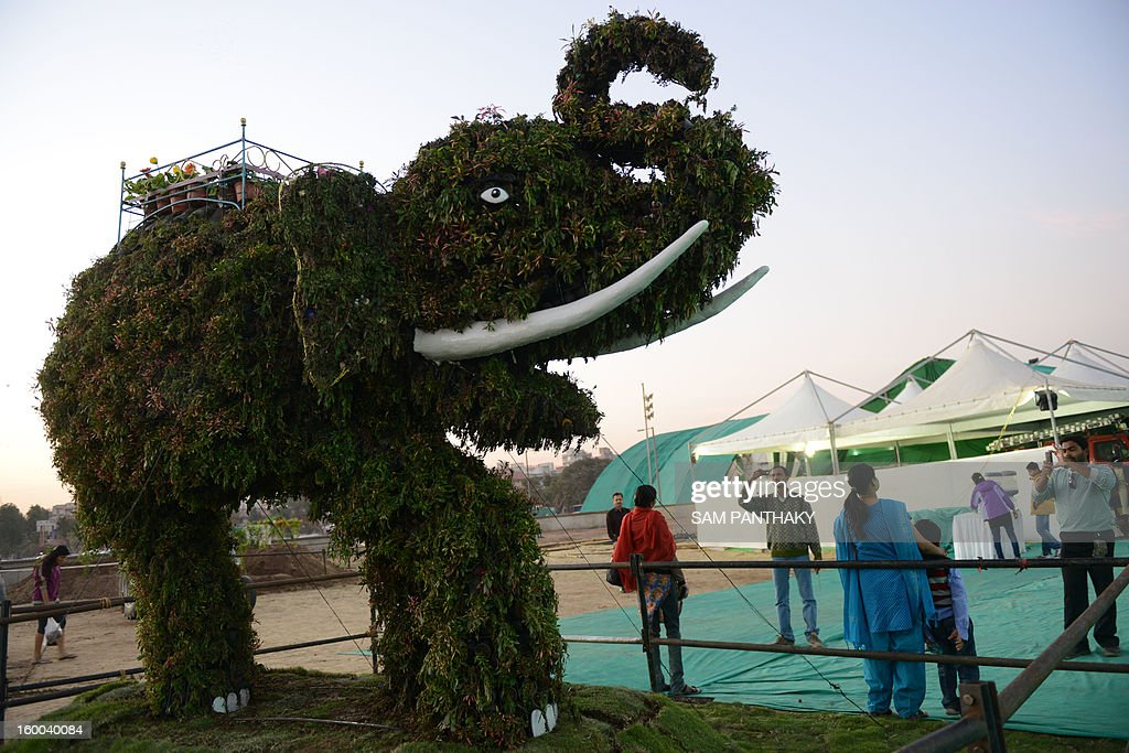 An elephant installation made from plants and flowers is seen during the Ahmedabad Flower Show at the Sabarmati riverfront in Ahmedabad on January 25, 2013. Some 500 varieties of plants and flowers are on display during the five-day show. AFP PHOTO / Sam PANTHAKY