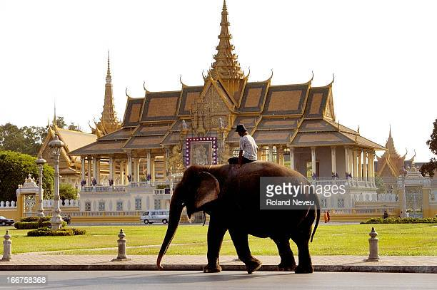 An elephant making his way past the Royal Palace in the city of Phnom Penh