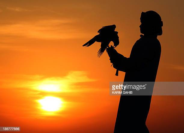 An Emirati man holds a falcon during a falconry competition part of the Third International Festival of Falconry in Ramah south of AlAin on December...