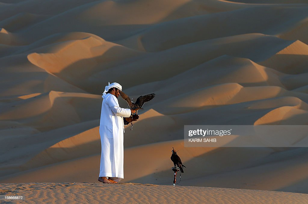 An Emirati man holds his falcon at the Liwa desert, 220 kms west of Abu Dhabi, on the sidelines of the Mazayin Dhafra Camel Festival on December 23, 2012. The festival, which attracts participants from around the Gulf region, includes a camel beauty contest, a display of UAE handcrafts and other activities aimed at promoting the country's folklore.