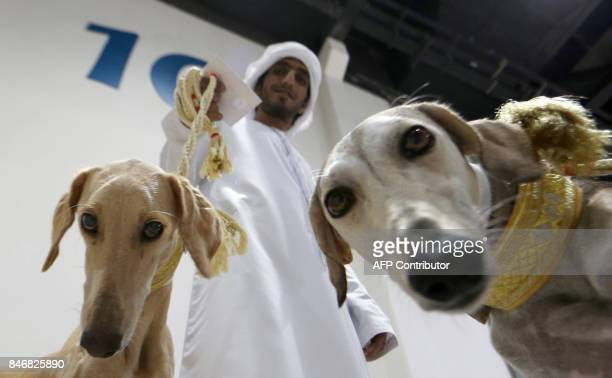 An Emirati man poses for a picture with his Saluki dogs at an Arabian Saluki beauty contest as part of the Abu Dhabi International Hunting and...