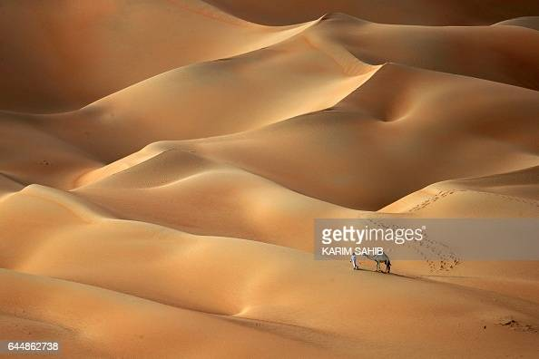 TOPSHOT An Emirati man walks with his camels across the Hameem desert some 170 kilometres west of the Gulf Emirate of Abu Dhabi on February 24 2017 /...