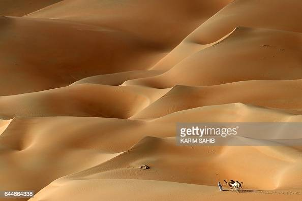 An Emirati man walks with his camels across the Hameem desert some 170 kilometres west of the Gulf Emirate of Abu Dhabi on February 24 2017 / AFP /...