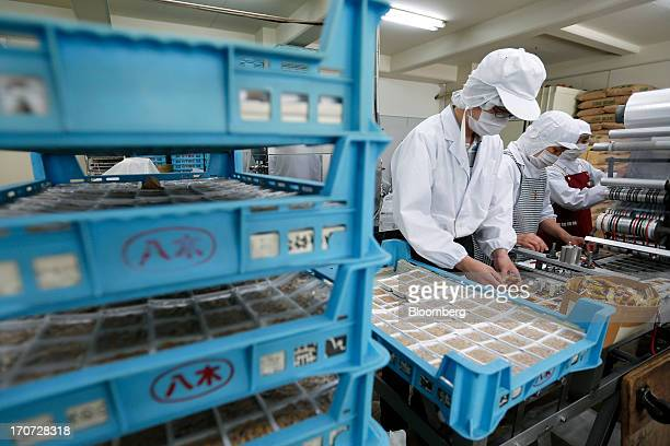 An employee arranges sachets of seasoning sauce and mustard onto polystyrene trays of fermented soybeans known as natto at the Matsushita Shoten YK...