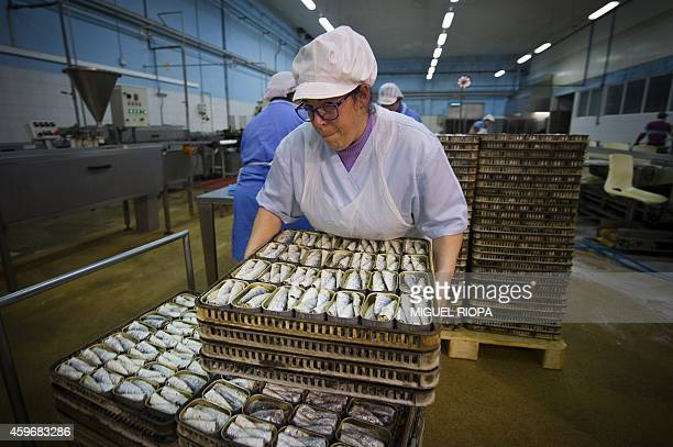 An employee carries some trays with traditional precooked sardines cans prior to filling them with olive oil at La Gondola canning plant in the...
