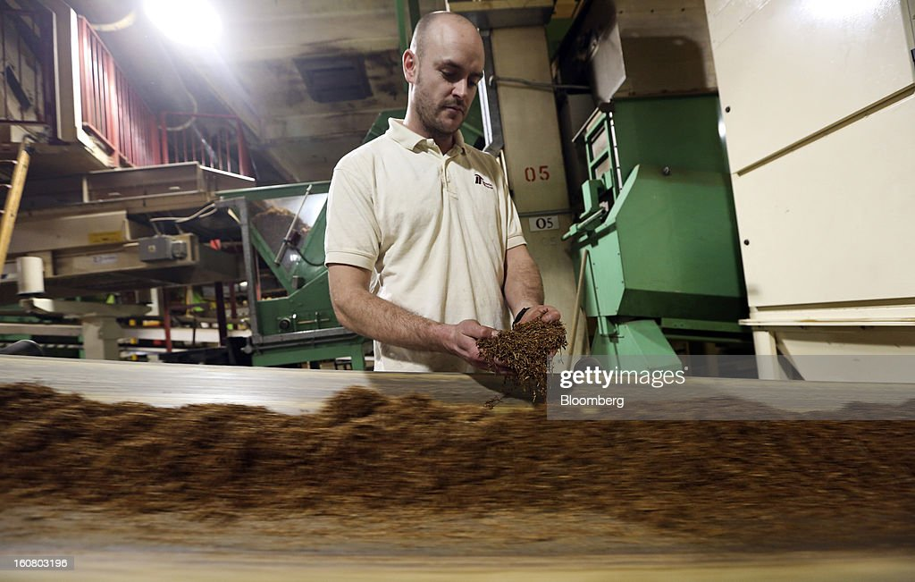 An employee checks shredded tobacco leaves as they pass along a conveyor belt ahead of cigarette and rolling tobacco manufacture at Imperial Tobacco Group Plc's factory in Nottingham, U.K., on Friday, Feb. 1, 2013. Imperial Tobacco Group Plc is Europe's second-biggest tobacco company and generates about 40 percent of its profit from the region. Photographer: Chris Ratcliffe/Bloomberg via Getty Images