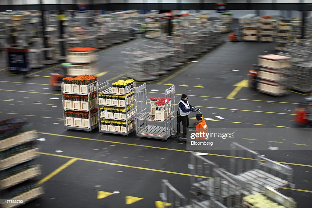 An employee drives an electric cart as he transports cages of flowers before distribution at FloraHolland, the largest flower trade center in the world, in Aalsmeer, Netherlands, on Tuesday, March 11, 2014. The Netherlands' flower and plant exports, the world's biggest, fell 2.3 percent last year as declining consumer purchasing power was compounded by cold spring weather in Europe and a summer heat wave that hurt sales. Photographer: Jasper Juinen/Bloomberg via Getty Images