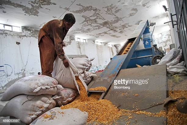 An employee empties cow feed into a machine at the Sapphire Dairies Ltd farm operated by Sapphire Group in the Manga area of Lahore Pakistan on...