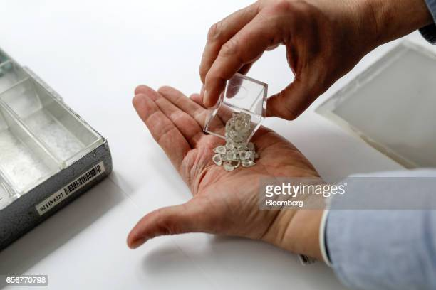 An employee empties unpolished diamonds into his hands at the De Beers SA headquarters on Charterhouse Street in London UK on Wednesday Feb 1 2017...