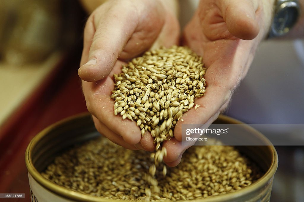 An employee holds malt barley, used in the production of Chivas Regal blended Scotch whisky, a brand of Pernod Ricard SA, at the company's Strathisla distillery in Keith, U.K., on Tuesday, Aug. 5, 2014. Scottish nationalist leader Alex Salmond and former Chancellor of the Exchequer Alistair Darling, who leads the 'No' campaign, clashed over the risks and merits of independence six weeks before the Sept. 18 referendum that could bring an end to the U.K. Photographer: Simon Dawson/Bloomberg via Getty Images