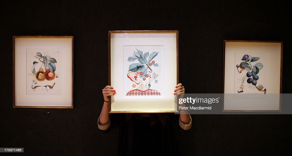 An employee holds Salvadore Dali's watercolour 'Cerises Pierrot' displayed with 'Fruits troués' (L) and 'Prunier hâtif' (R) by the same artist at Bonhams on June 12, 2013 in London, England. The fourteen original Salvador Dali watercolour fruit studies have been unseen by collectors until now. Valued at £40,000 - £70,000 each they will be sold at Bonhams' Impressionist and Modern Art sale in London on June 18, 2013. Commissioned in 1969, the paintings have been in private hands since their creation.