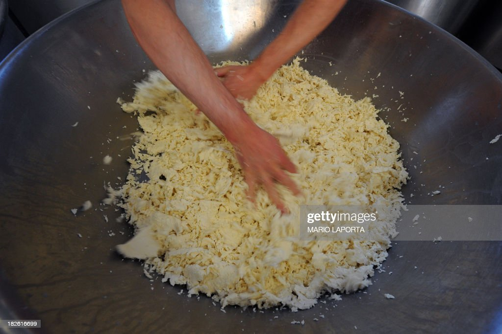 An employee makes buffalo mozzarella at the Tenuta Vannulo dairy farm in Capaccio on September 3, 2013. A queue forms for rub-downs as jazz piano tinkles out of the speakers: some of the best buffalo mozzarella in the world starts with in-stable VIP treatment. The half-tonne black water buffaloes spend their days lounging on rubber mattresses, munching on organic hay or looking forward to vaporised showers that form a fine cooling mist from overhead pipes.
