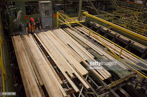 An employee monitors lumber as it moves along a conveyor belt during processing at the West Fraser Timber Co sawmill in Quesnel British Columbia...