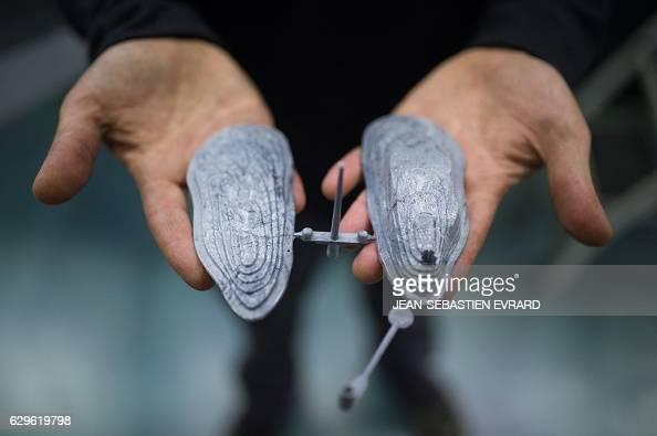 An employee of ASM Seriplast plant shows an antitheft device for oysters on December 12 2016 Boufféré western France FlexSense has created an...