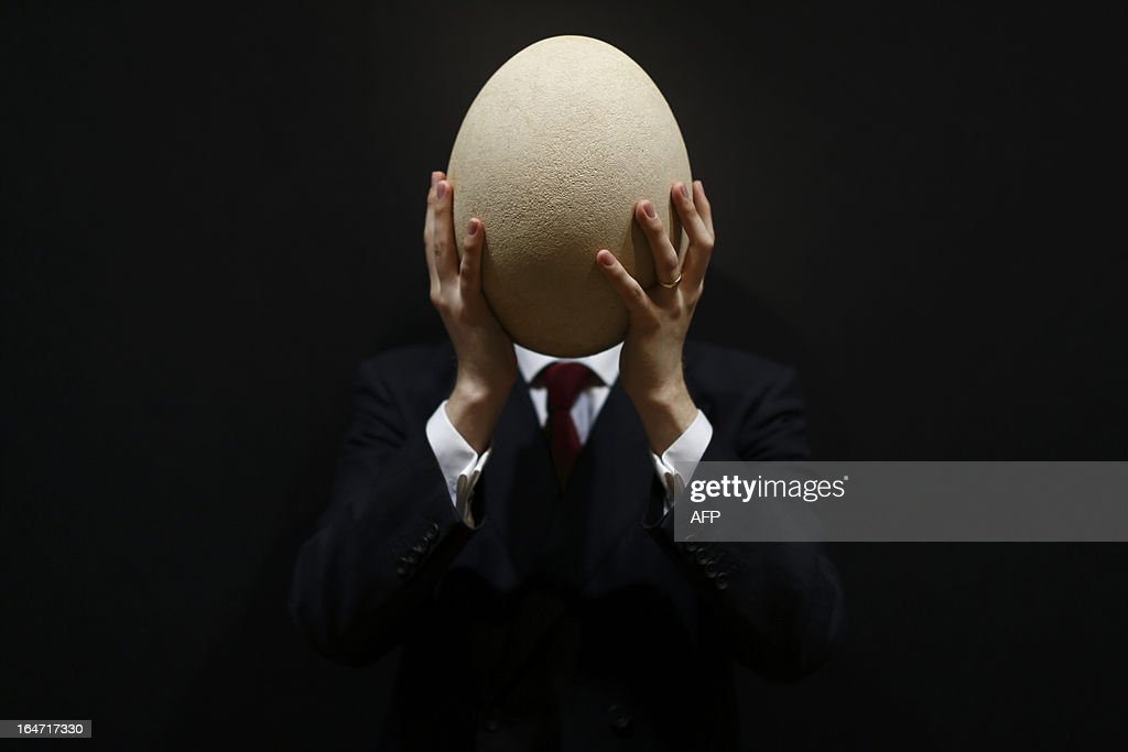 An employee of Christie's auction house poses with a complete sub-fossilised Elephant Bird egg in London on March 27, 2013 during a press preview of their April 'Travel, Science and Natural History' sale. This pre-17th century egg of the extinct Elephant Bird, the largest bird ever to have lived, is approximately 100 times larger than the average chicken's egg and is estimated to fetch 20,000 - 30,000 GBP when it goes on sale on April 24, 2013.