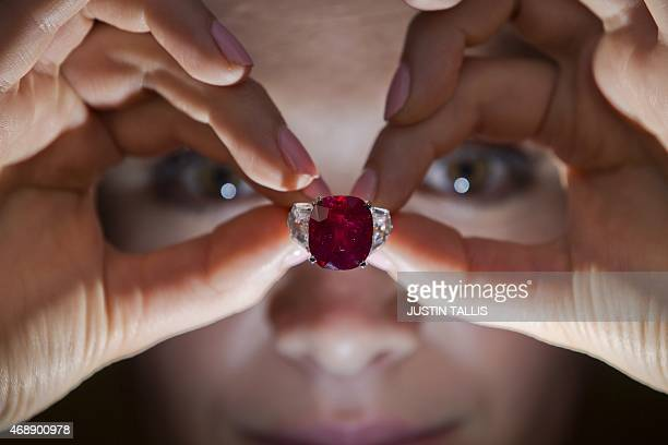 An employee of Sotheby's auction house poses with 'The Sunrise Ruby' a rare Burmese ruby weighing 2559 carats and estimated to sell for $1218 million...