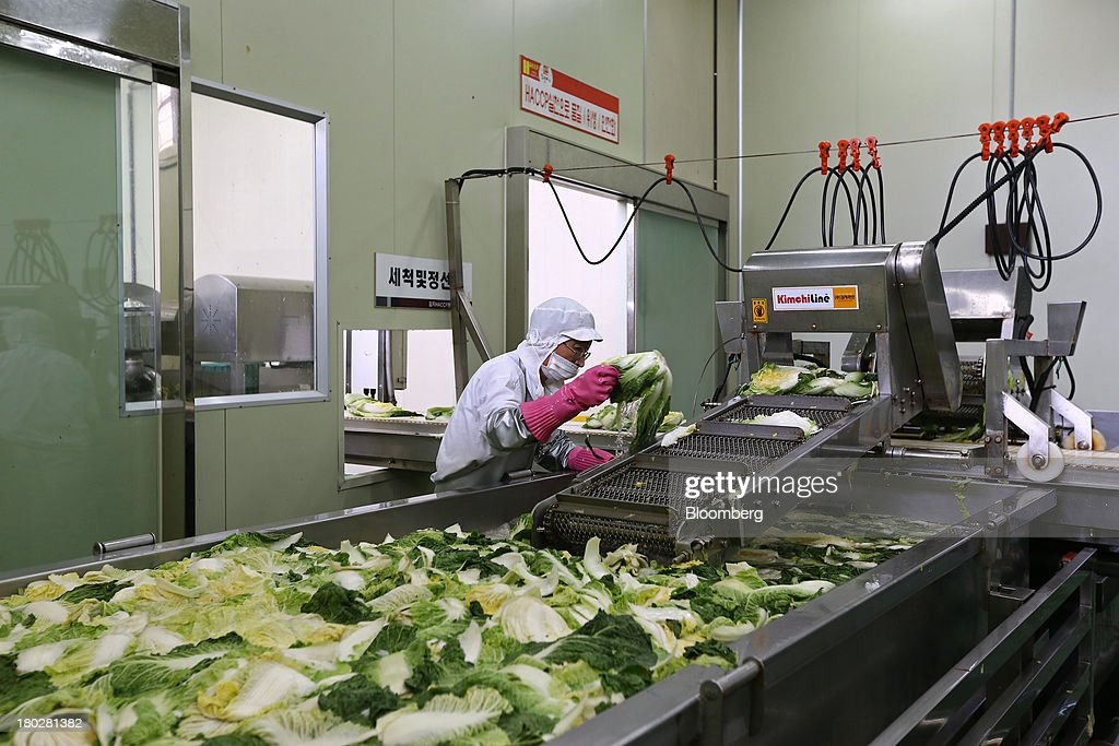 An employee places washed cabbages on a conveyor belt on the production line at the Gamchilbaegi Co. kimchi factory in Gwangju, South Korea, on Tuesday, Sept. 10, 2013. Gross domestic product rose 1.1 percent in the second quarter from the preceding three months, the most in more than two years, central bank data showed Sept. 5. Photographer: SeongJoon Cho/Bloomberg via Getty Images