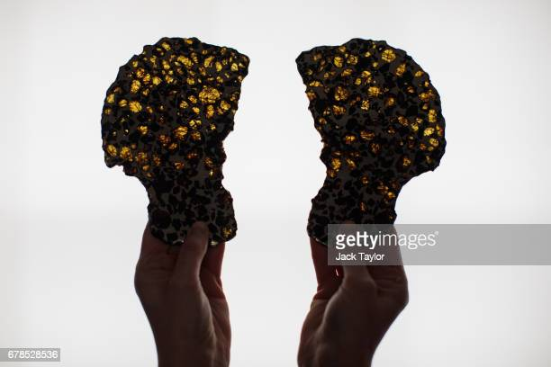 An employee poses with pair of Pallasite Meteorite slices from Imilac Chile at 5 Cromwell Place on May 4 2017 in London England British art dealer...