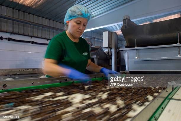 An employee selects olives on the packaging production line at the 'Agro Sevilla' olive manufacturing company in La Roda de Andalucia on September 29...
