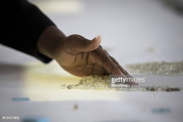 An employee seperates a pile of rough diamonds by hand during the sorting process at the Namibian Diamond Trading Co diamond processing and valuation...