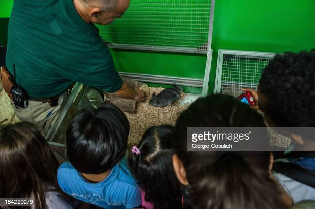 An employee shows a chinchillas to a group pf children during the opening of the event 'Getting in touch with nature' in the new educational area at...