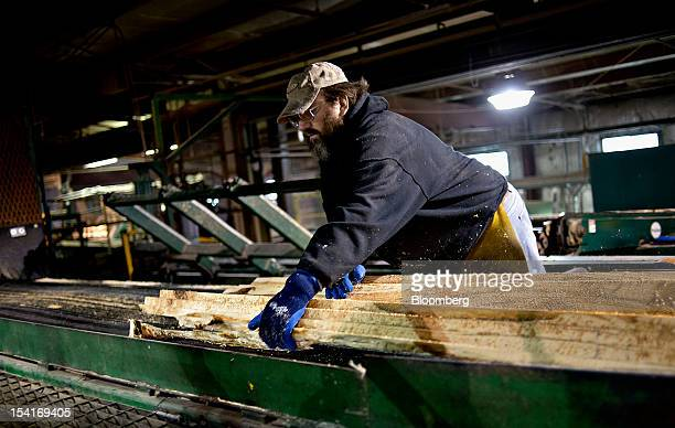 An employee sorts boards as they exit a cutting machine at the Nicolet Hardwoods Corp lumber mill in Laona Wisconsin US on Wednesday Oct 10 2012...