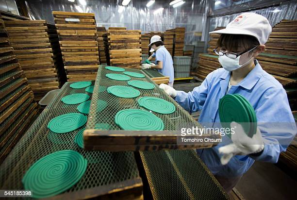 An employee sorts mosquito coils at the Kishu Factory of Dainihon Jochugiku Co Ltd on July 6 2016 in Arita Japan Japanese insect repellent...
