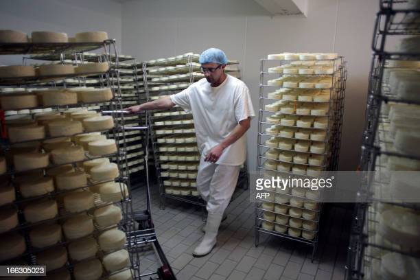 An employee stores Camembert cheeses to ripen at Francois Durand's cheese farm 'La Heronniere' on April 11 2013 in the French northwestern village of...