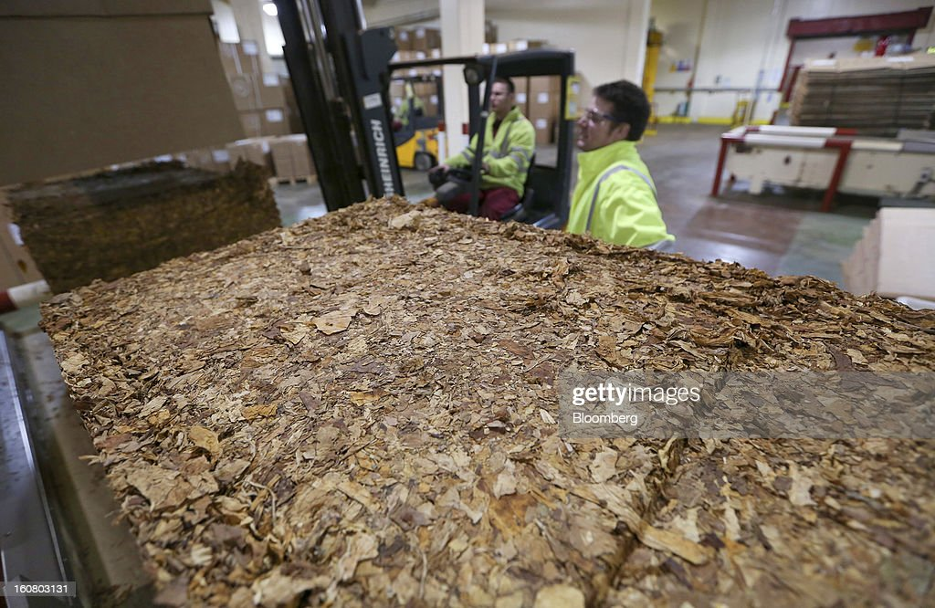 An employee uses a fork lift truck to empty a block of raw tobacco onto a conveyor belt ahead of cigarette and rolling tobacco manufacture at Imperial Tobacco Group Plc's factory in Nottingham, U.K., on Friday, Feb. 1, 2013. Imperial Tobacco Group Plc is Europe's second-biggest tobacco company and generates about 40 percent of its profit from the region. Photographer: Chris Ratcliffe/Bloomberg via Getty Images